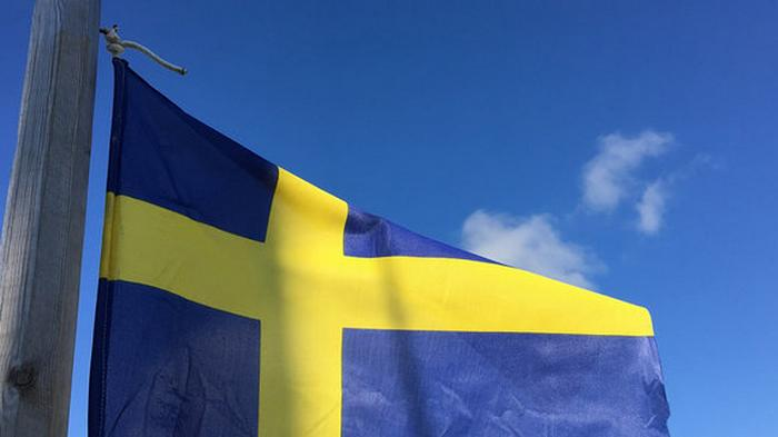 Действия властей Швеции по сдерживанию COVID-19 расследует спецкомиссия
