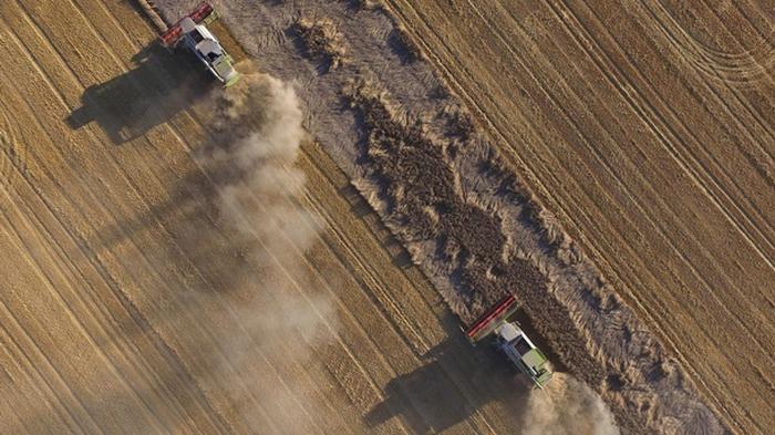 Рада одобрила законопроект о приватизации земель госпредприятий
