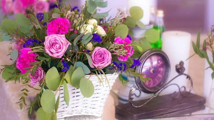 Стабилизированные растения: особенности и преимущества