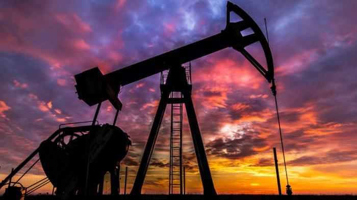 Цены на нефть снижаются из-за резкого роста запасов в США