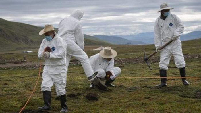 В Китае зафиксировали еще одну смерть от чумы