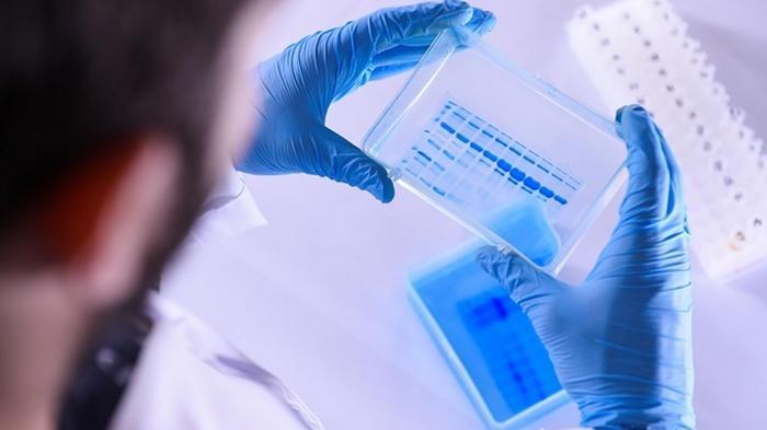 Китайскую вакцину от COVID-19 начнут продавать в декабре за $150