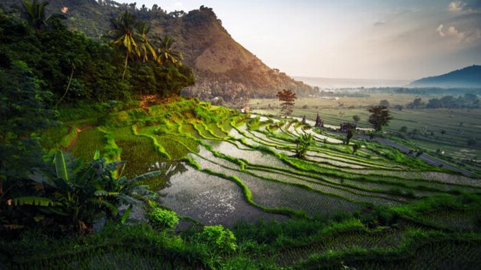 Бали закроет границы для туристов до конца года