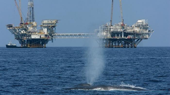 Нефть дешевеет на ожиданиях от встречи ОПЕК+