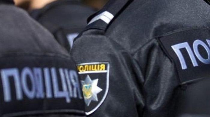 Полиция открыла за сутки восемь дел из-за выборов