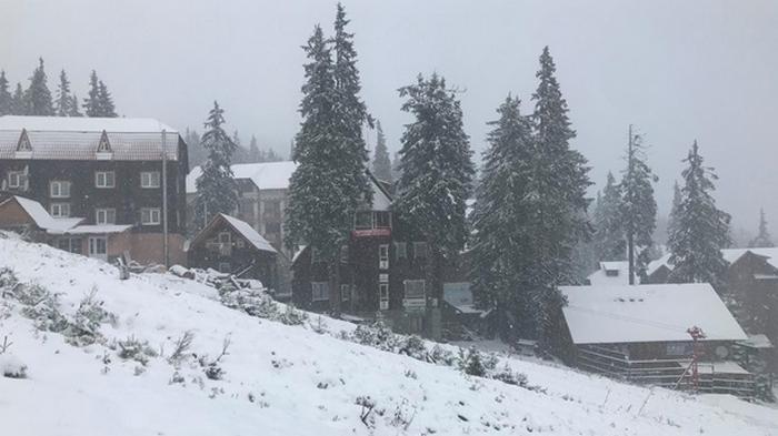 Курорт в Карпатах засыпало снегом (видео)