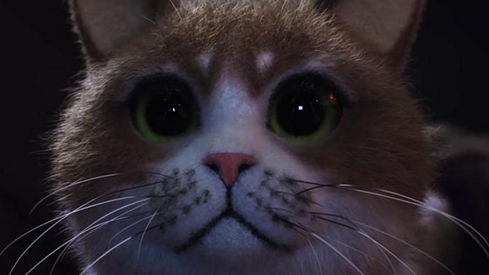 Вышел первый фильм ужасов для кошек (видео)