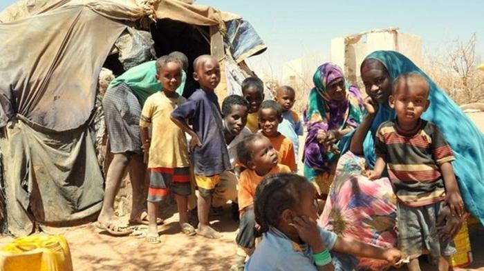ООН назвала страны, которым угрожает голод