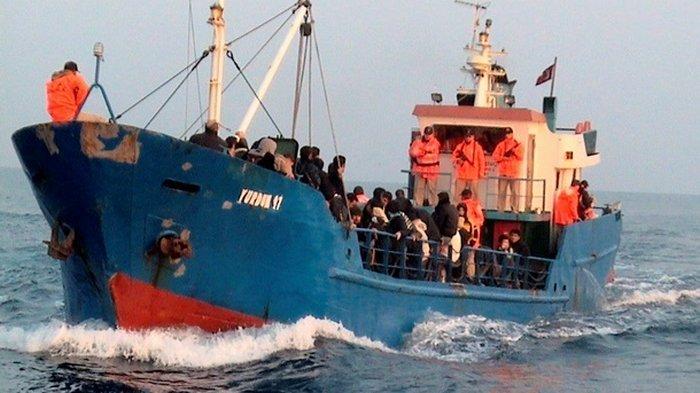 В Британии задержали украинцев за перевозку нелегалов