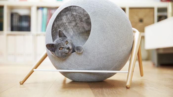 Какой домик для кота лучше выбрать