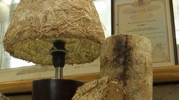 Ученые из Херсона создали грибной пластик (видео)