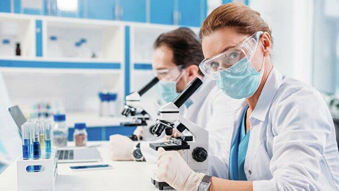 Мутация коронавируса: британские ученые прогнозируют рост смертности