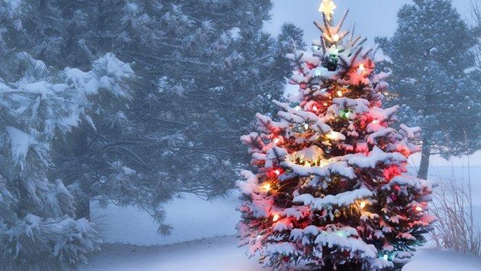 Гороскоп на новогоднюю неделю 27 декабря – 2 января: все знаки зодиака