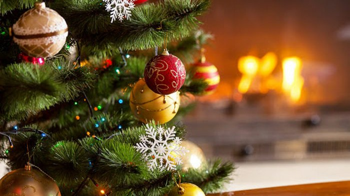 Как угодить Быку: советы для встречи Нового года