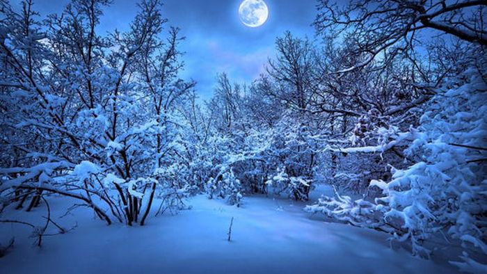Гороскоп на неделю 17-23 января: все знаки зодиака