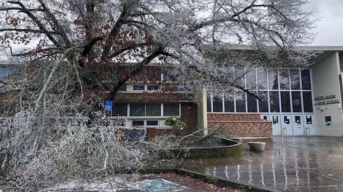 В США прошли ледяные штормы