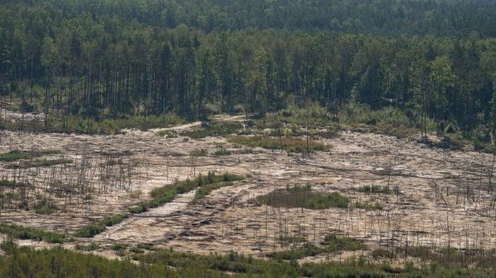 За экологией Украины будет следить спутник