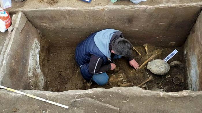 В поле Тернопольской области найдены древние артефакты