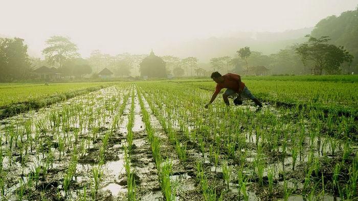 Ученые предупреждают о страшных последствиях из-за неограниченного потребления ресурсов Земли