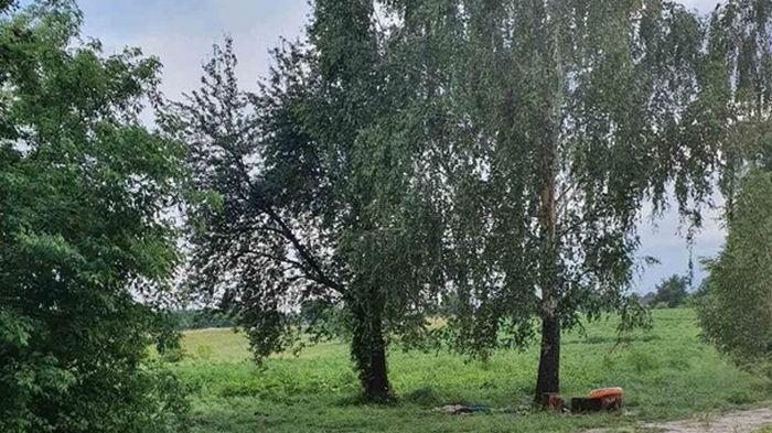 В Черкасской области молния убила двух человек
