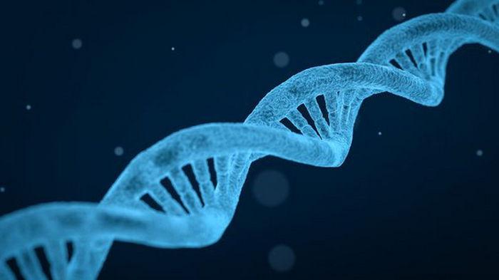 В России будут собирать генетические данные о гражданах: вводят цифровой геномный паспорт