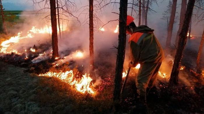 Лесные пожары в России: огонь охватил более миллиона гектаров, режим ЧС ввели в восьми регионах