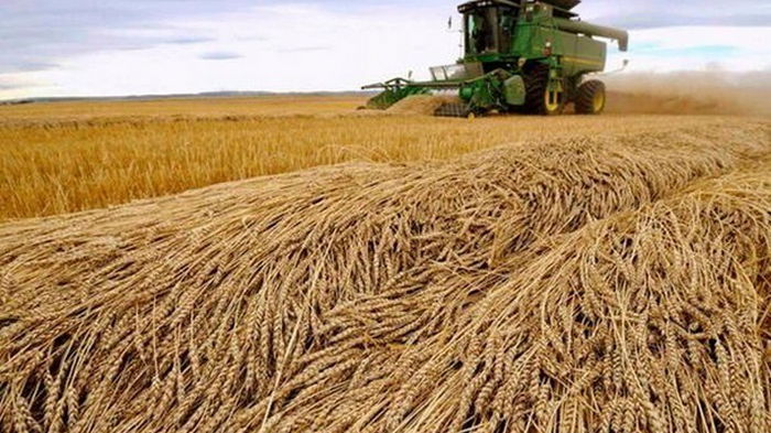 Зеленский вернул 20% НДС для аграриев