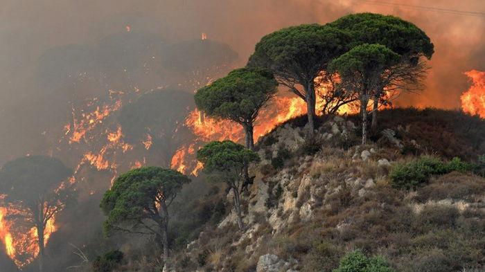 В четырех регионах Италии бушуют лесные пожары, погибли три человека