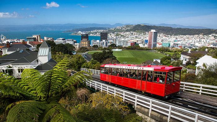 Новая Зеландия ввела локдаун по всей стране из-за одного случая коронавируса