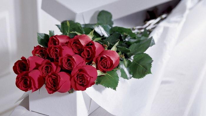 Троянди — милий подарунок для коханої