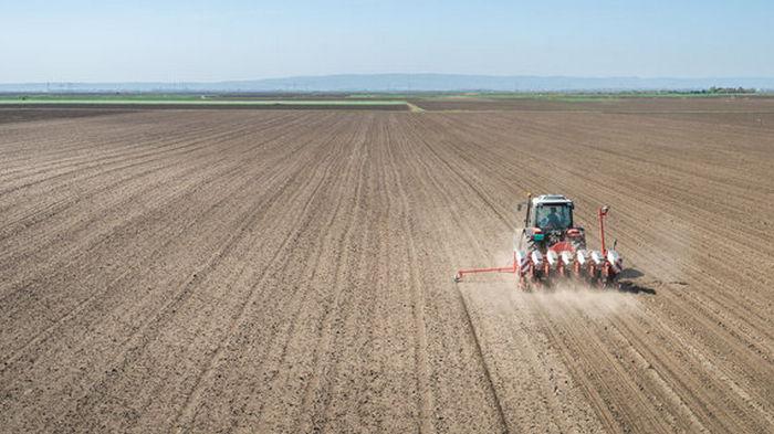 Средняя цена гектара сельхоз земли оказалась ниже, чем утверждали в Минагрополитики