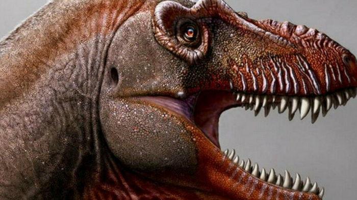 Ученые обнаружили останки нового динозавра