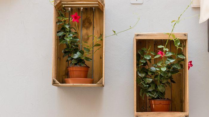 Декорируем стену подставкой для цветов