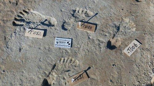 В США нашли следы человека, которым свыше 20 тысяч лет (фото)