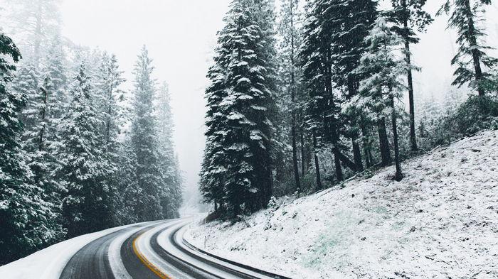 Суровая зима на Северном полушарии вызовет хаос на энергорынке - Bloomberg