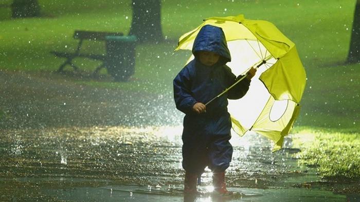 Синоптики дали прогноз погоды на июнь